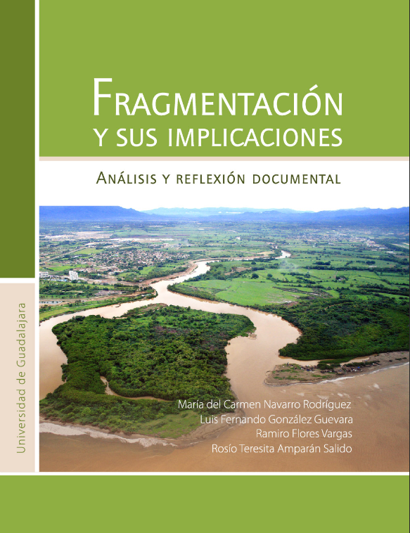 Fragmentacion y sus implicaciones analisis y reflexion documental - 2015